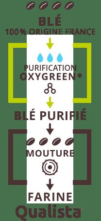 schéma du procédé oxygreen pour les farines qualista
